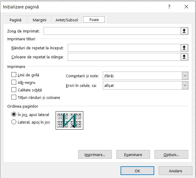 Fereastra Initializare pagina Excel - Foaie