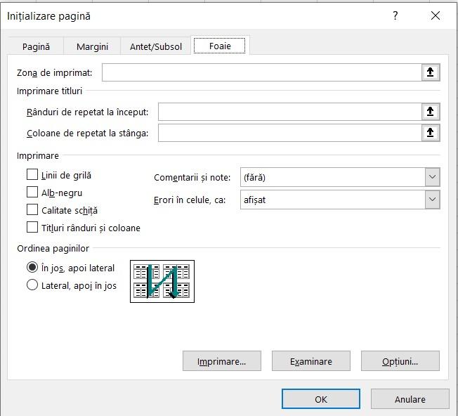 Fereastra Initializare pagina Excel - Foaie