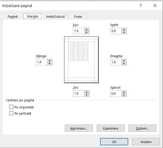Fereastra Initializare pagina Excel - Margini