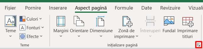 Sectiunea Initializare pagina Excel