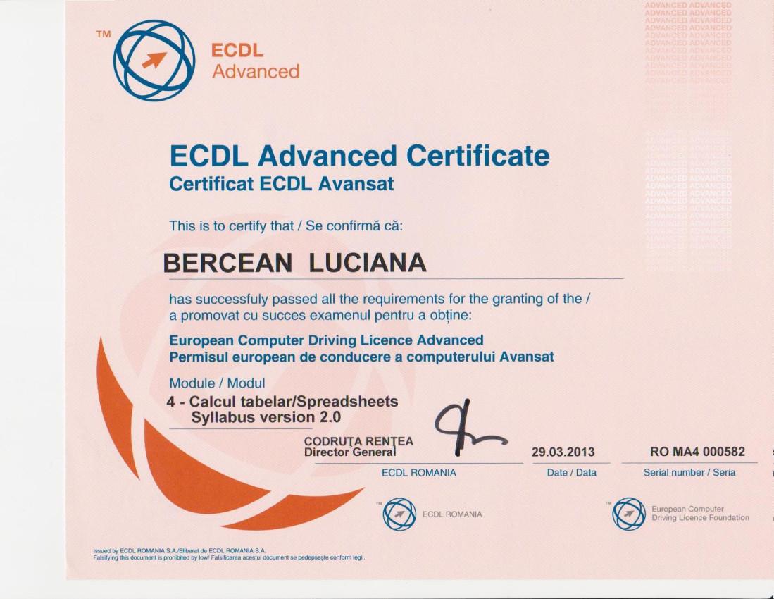 Certificare ECDL Avansat Excel - Bercean Luciana