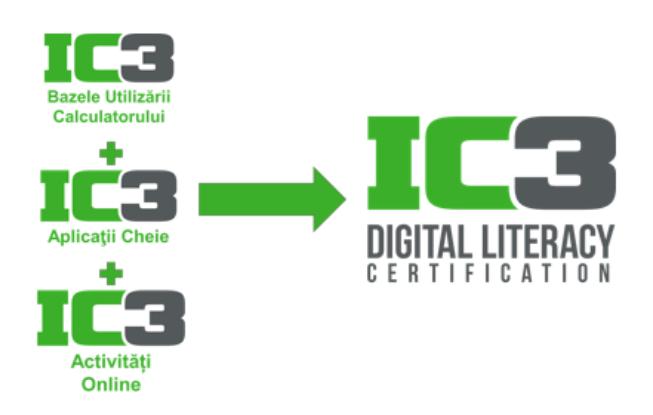 3 examene certificare IC3